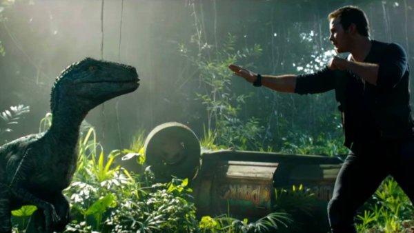 Hd 1080p Ver Jurassic World El Reino Caído 2018 Película Completa Online En Español Latino Subtitulado Repelis Ver Pelicula Completa En Espanol Latino